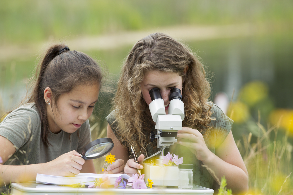 Young Girls Looking at Plants Under a Microscope